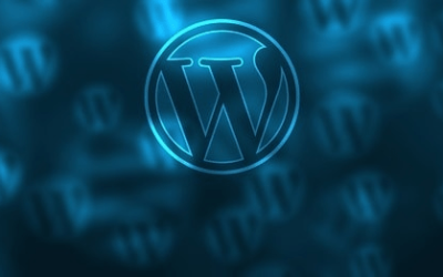 30% des sites internet dans le monde utilisent WordPress